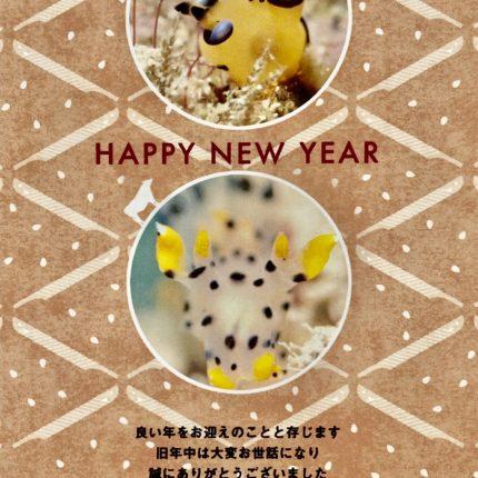 Happy New Year☆